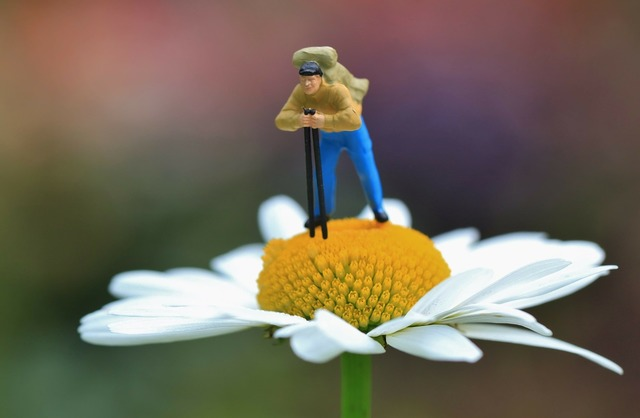 Miniature sculpture mini world, nature landscapes.