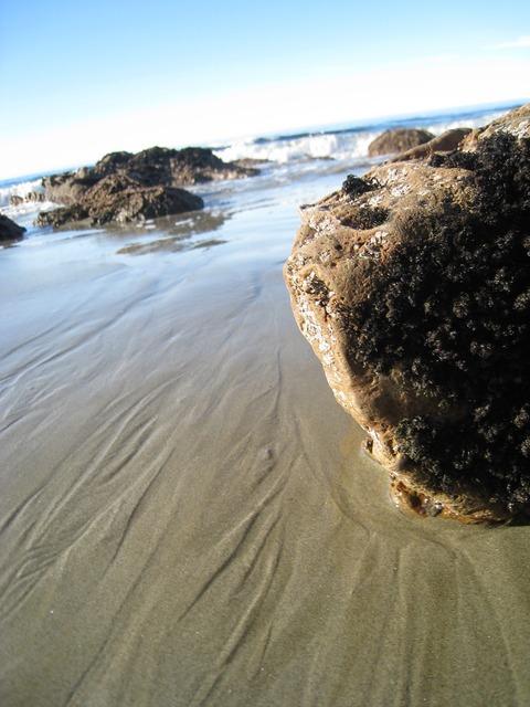 Moeraki boulders sea new zealand, travel vacation.