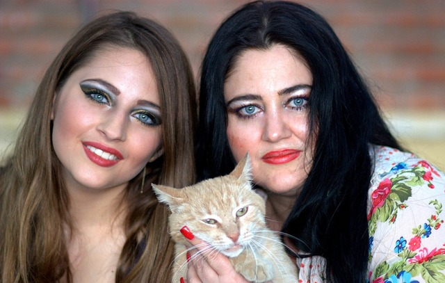 Mom daughter cat, animals.
