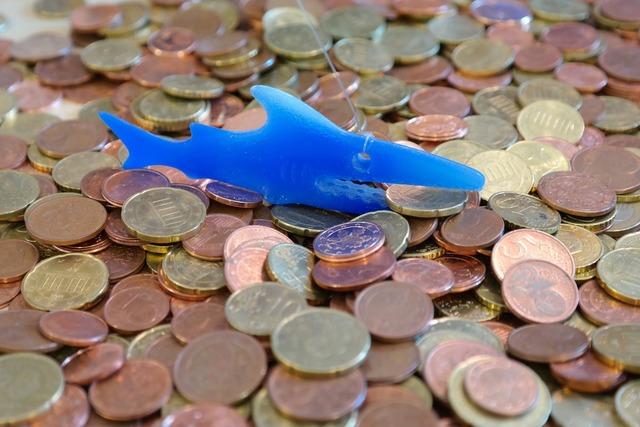 Money shark coins cent, business finance.