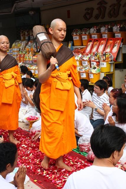 Monk buddhists monk walk, religion.