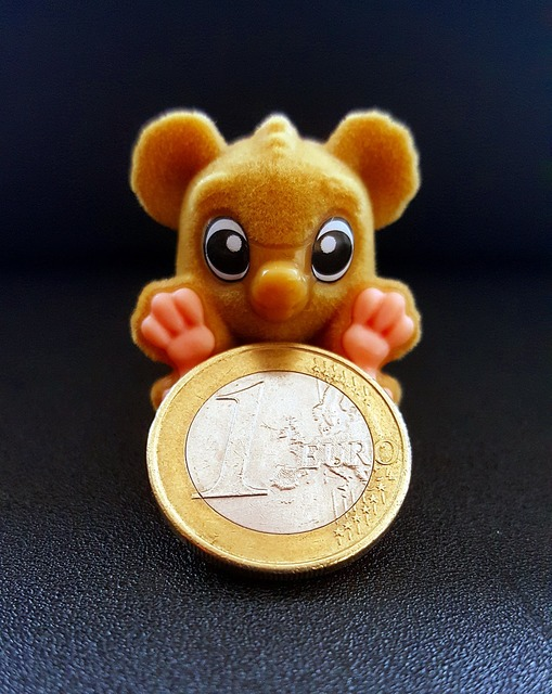 Monkey euro coin, business finance.