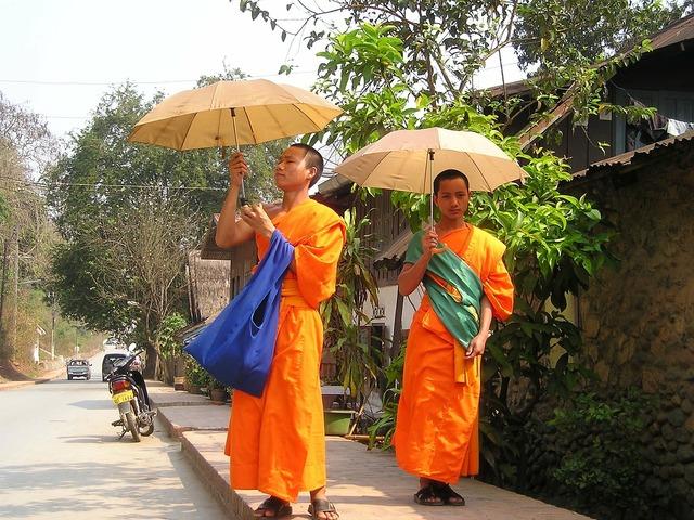 Monks buddhists orange.