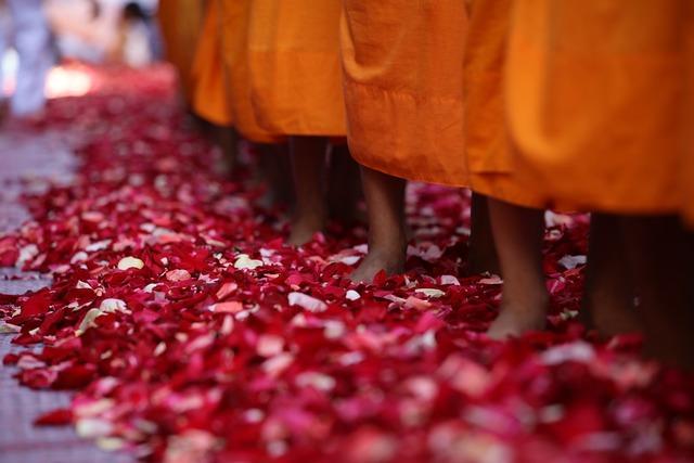 Monks buddhists walk, religion.