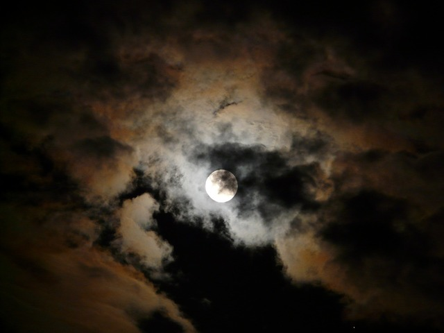 Moon moonlight pale.