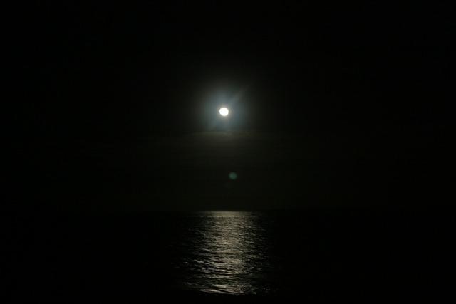 Moon night moon night.