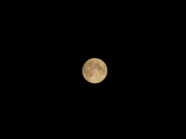 Moon night mysticism.