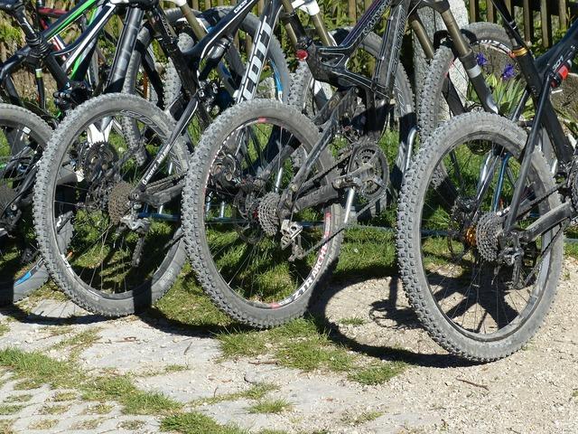 Mountain bikes wheels mature.