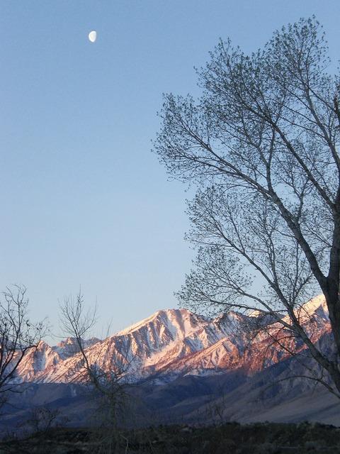 Mountains trees moon.