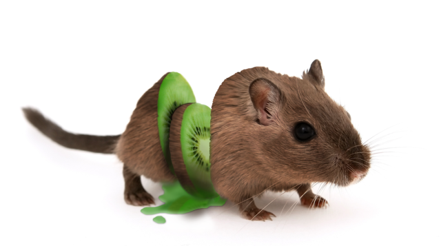 Mouse kiwi cut, food drink.