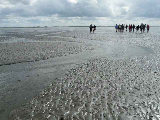 Mudflat hiking priel hike.