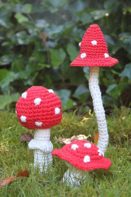Mushroom hooks autumn fly agaric, nature landscapes.
