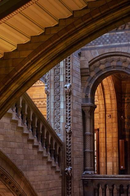Natural history museum london staircase, architecture buildings.