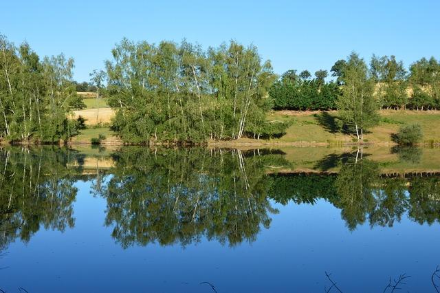 Nature pond landscape, nature landscapes.