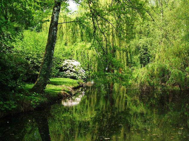 Nature state garden show landscape, nature landscapes.