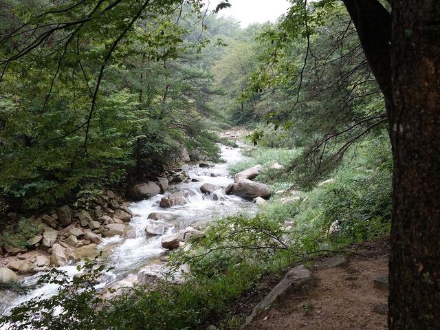 Nature valley mungyeong saejae, nature landscapes.
