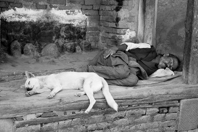 Nepal people dogs, people.