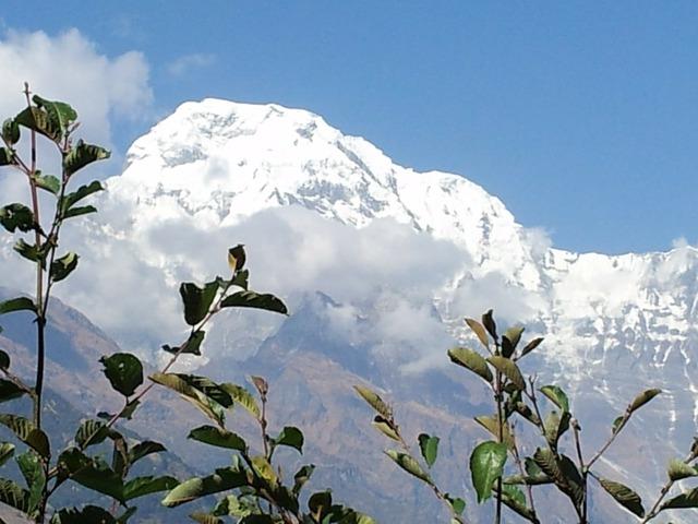 Nepal tracking annapurna.