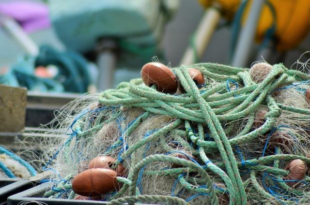 Net fishing nets france.