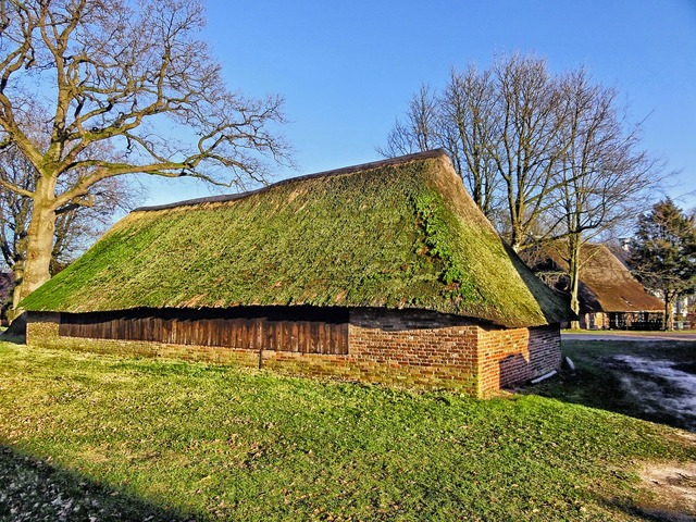 Netherlands building shelter, architecture buildings.