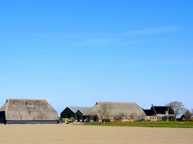 Netherlands landscape scenic, nature landscapes.