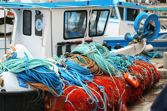 Netting port corsican.