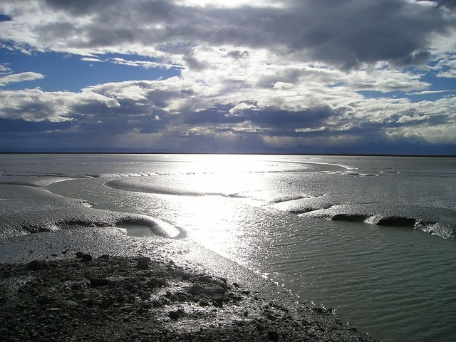 New zealand sea wadden sea.