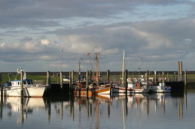 Norddeich sea north sea.