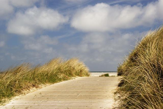 North sea beach dunes, travel vacation.