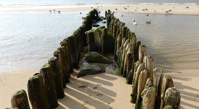 North sea beach groynes, travel vacation.