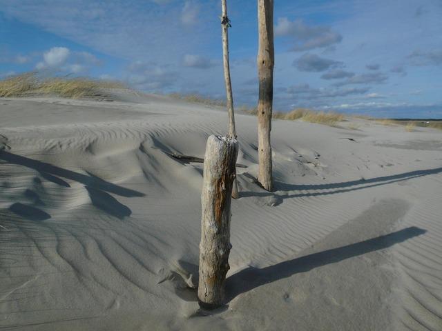 North sea dunes beach, travel vacation.
