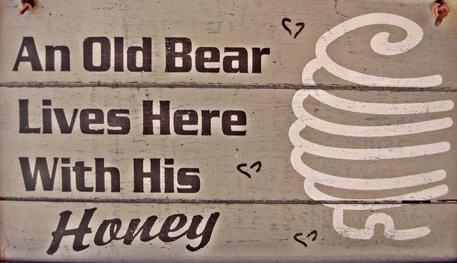 Old bear sign retro.