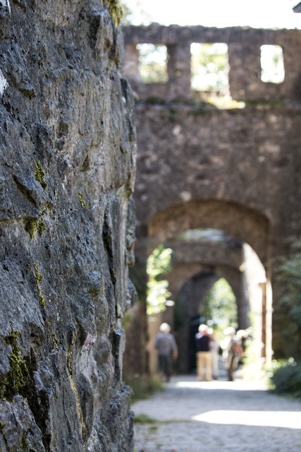 Old castle baden baden, travel vacation.