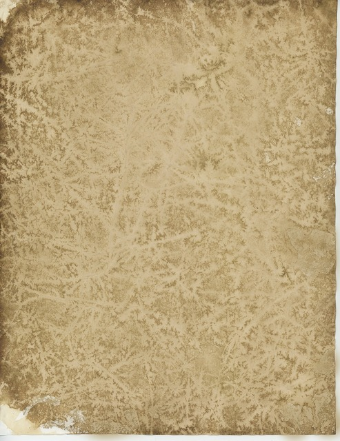 Old parchment paper.