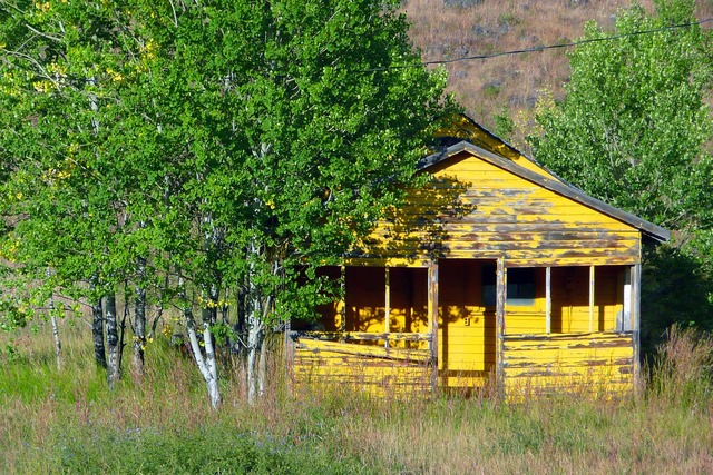 Old yellow shed, architecture buildings.
