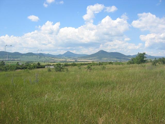 Ore mountains bohemia meadow.