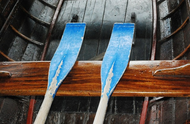Paddle oars boating.