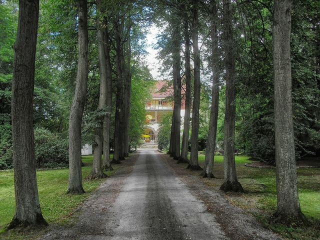 Paderborn germany landscape, nature landscapes.