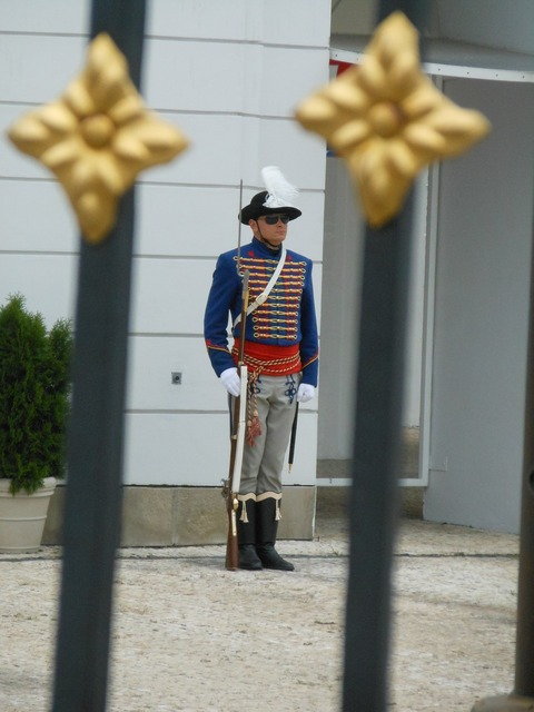 Palace castle guard.