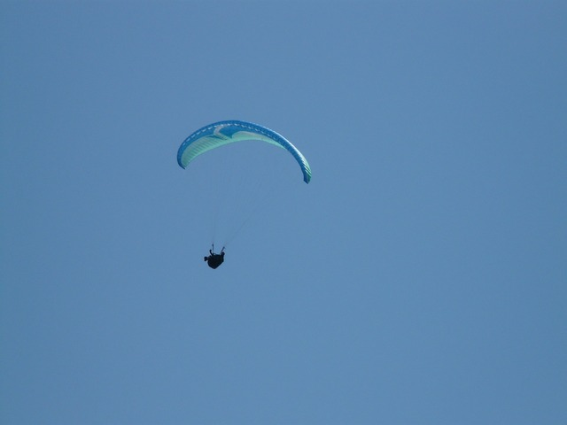 Paraglider paragliding fly, sports.