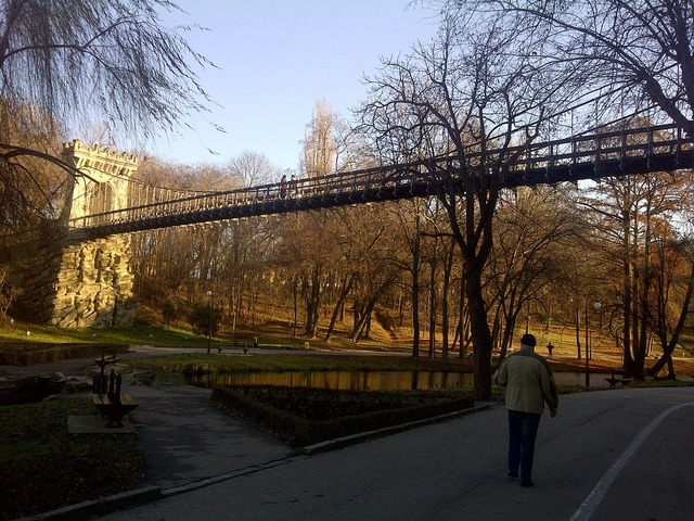 Park alley bridge.