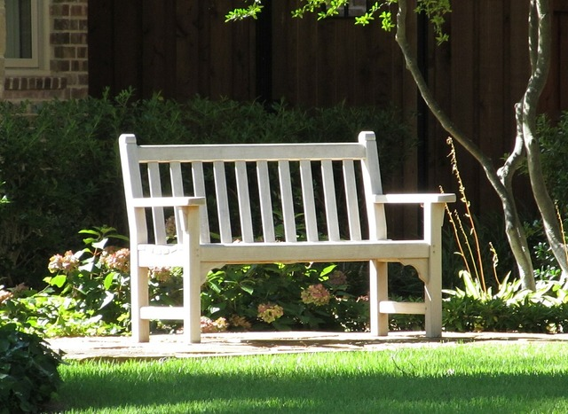 Park bench bench park.
