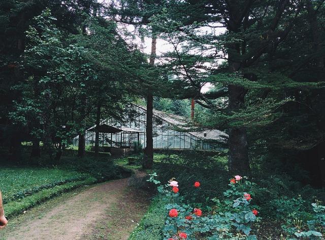 Park greenhouse garden, architecture buildings.