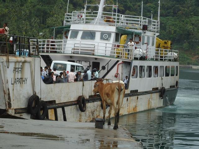 Passengers ferry boat regular services, transportation traffic.