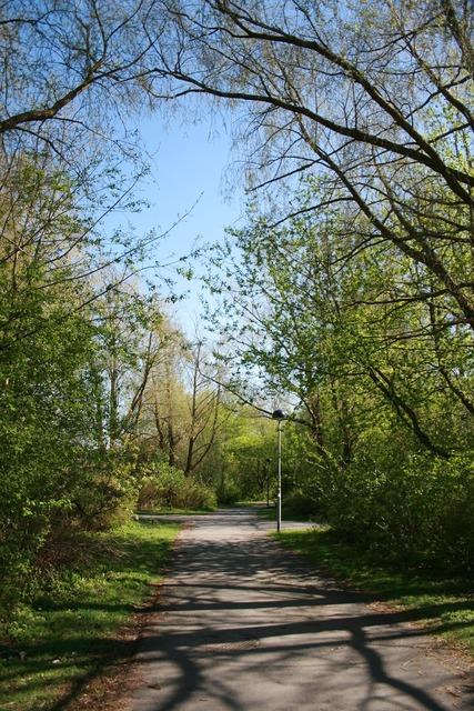 Path walkway scenic.