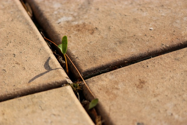 Paving bud cross, backgrounds textures.