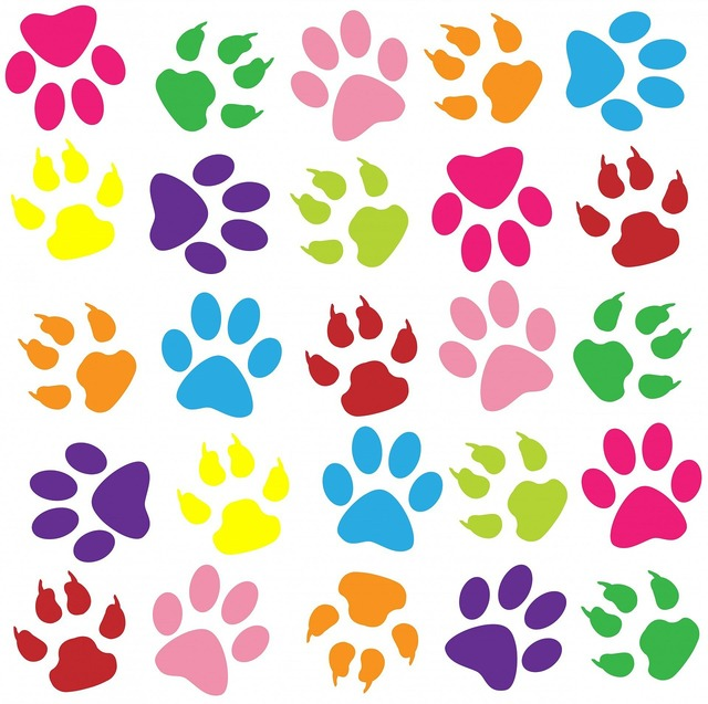Paw print paw prints background, backgrounds textures.
