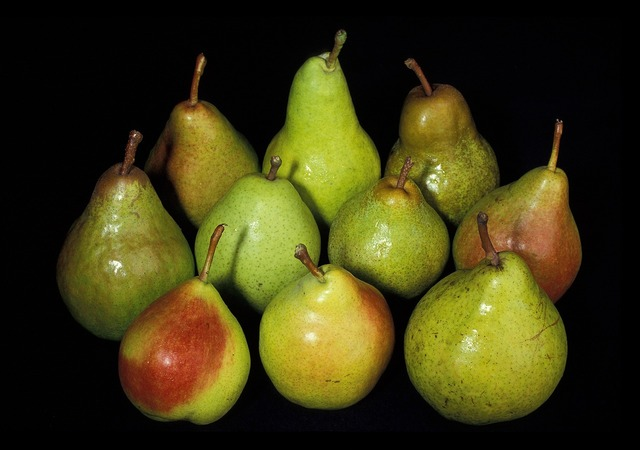 Pears fresh harvest, food drink.
