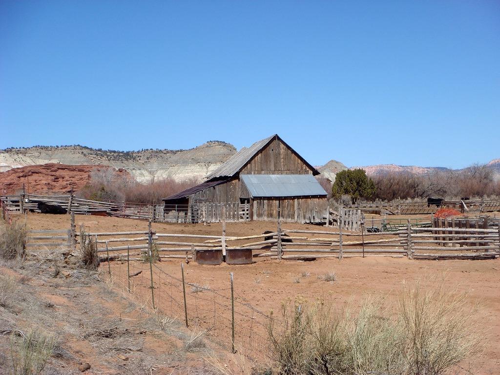 Peasant farm wild west.