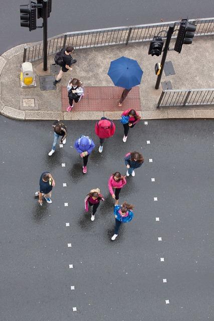 Pedestrian pedestrian crossing traffic lights, transportation traffic.